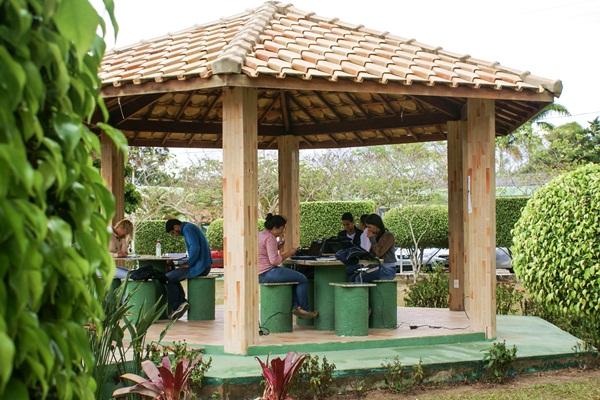 Estudantes reunidos em pequenos grupos em um quiosque no campus de Vitória da Conquista. Os estudantes estão com livros nas mesas lendo em grupo. Em volta do quiosque é possível ver a área de paisagismo da Uesb, com plantas ornamentais e arbustos podados em formas geométricas variadas.